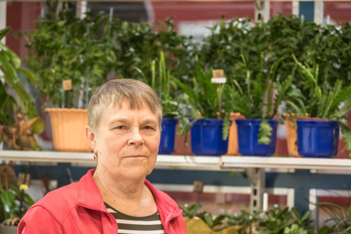 Kapsäkissä muun muassa kukkasia ja käsitöitä myyvä Anja Hirvelä väittää saaneensa syntymäpäivälahjaksi munakuppeja, toimineensa pitkään bingoemäntänä ja tehneensä tuohesta kontin.