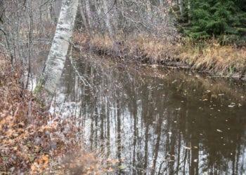 Saikkalanjoki maisemakylien etelälaidalla on yksi uusien asuinalueiden vetonauloja.