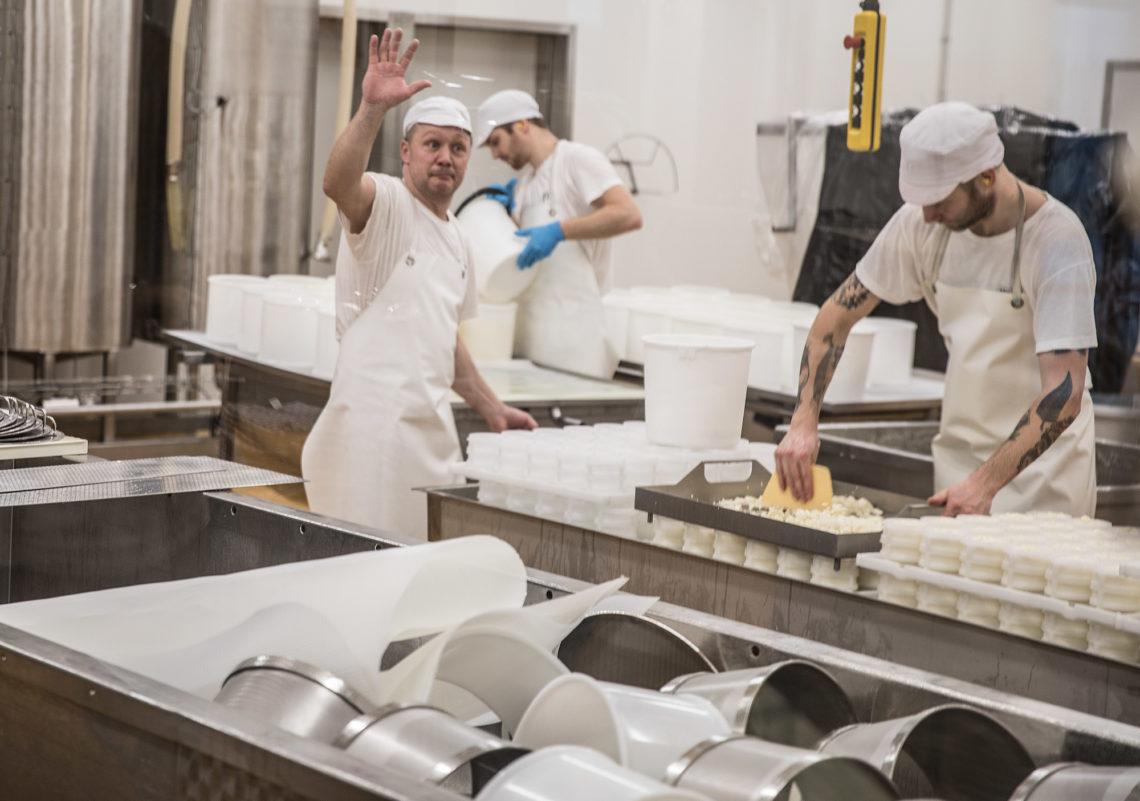 Juustomestari Peter Dörig, elintarvikeinsinööri Oskari Tikkala ja elintarviketeknikko Sergio Minder työn touhussa uudessa juustolassa.
