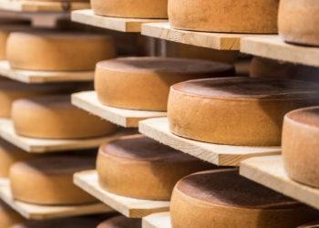 Herkkujuustolan Vilho-juustoja