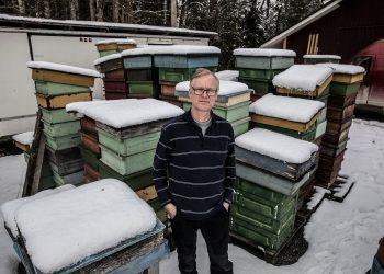 Mehiläistarhaaja Esa Pesosen piha on vielä huhtikuussa täynnä pesiä.