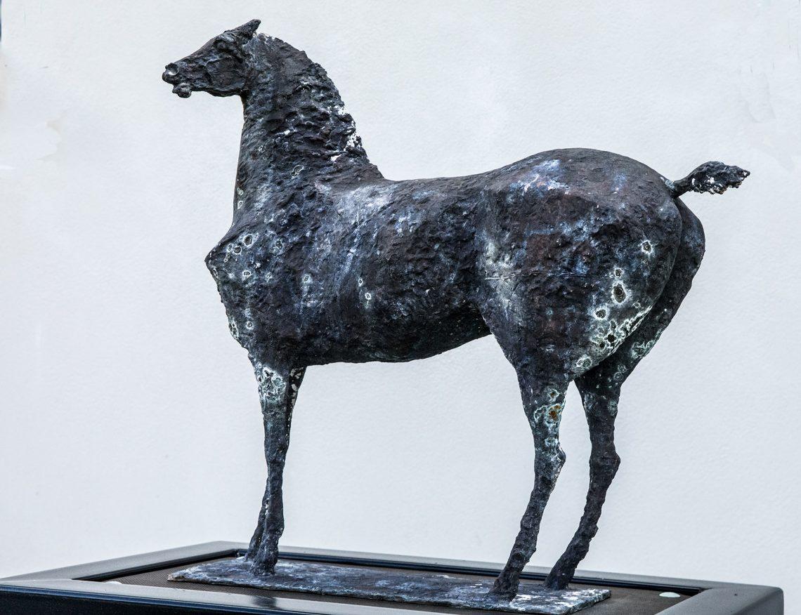 Nina Ternon näkemys hevosesta.