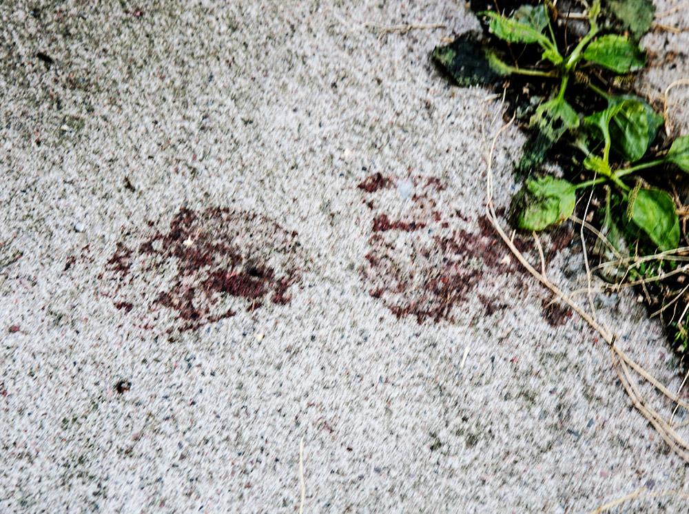 Verinen jalanjälki Kassantalon käytävän betonilaatassa.