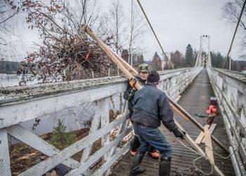 Onni Siivonen ja Jussi Ranta vinssasivat oksia ylös sillalle syksyllä, kun saarta raivattiin liioista puista ja vesakosta.