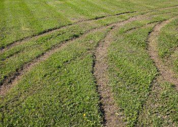 Kaalisaaren urheilukentän nurmikenttä on tuhottu. Se on käytännössä käyttökelvoton pallopelien pelaamiseen.